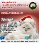 Katzenausstellung Bremen